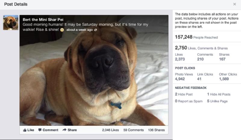 Facebook Post Scorecard